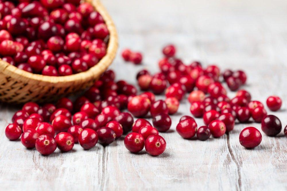 Cranberry Entwässern